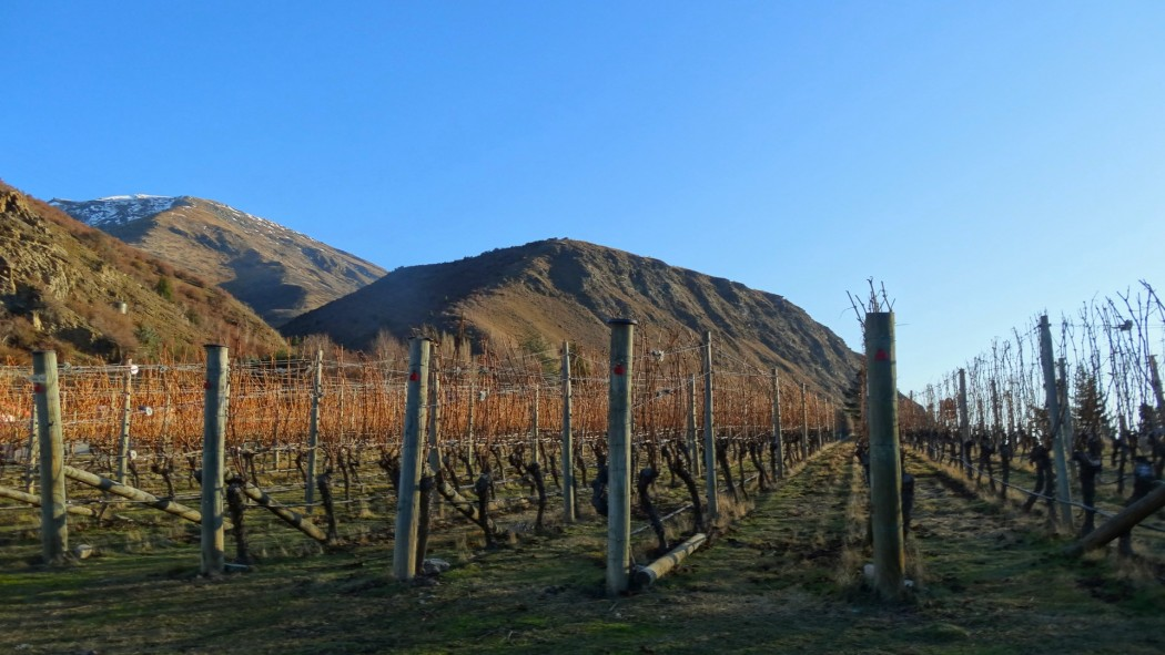 Gibbston Valley Wines